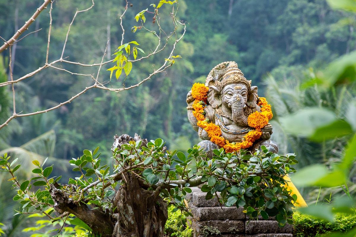 Tour di Bali