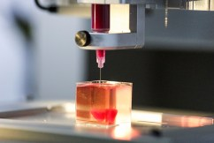 3D-printed organs used in transplants are 'realistic'