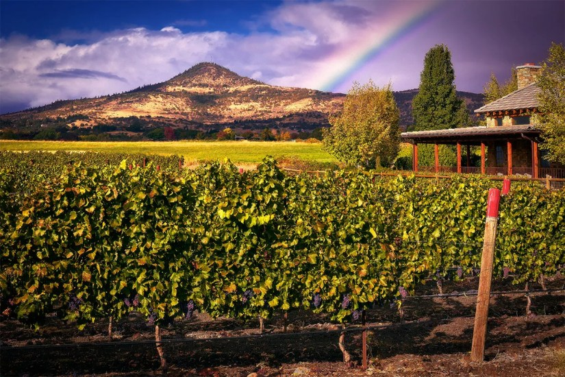 Rainbow over 2Hawk Vineyard and Winery