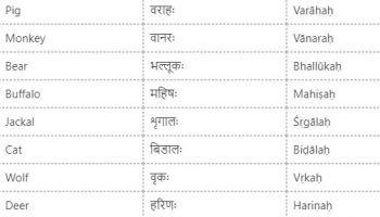 Sanskrit Names Of Vegetables From English