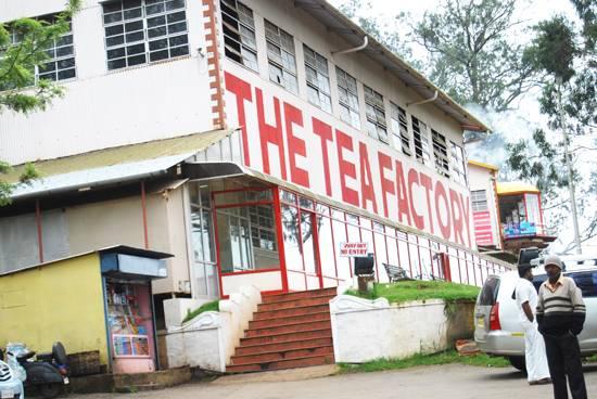 Tea Factory, Ooty