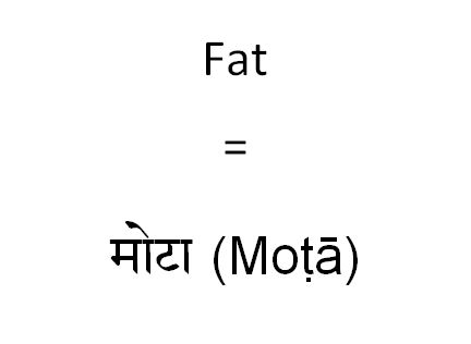 How to say fat in Hindi