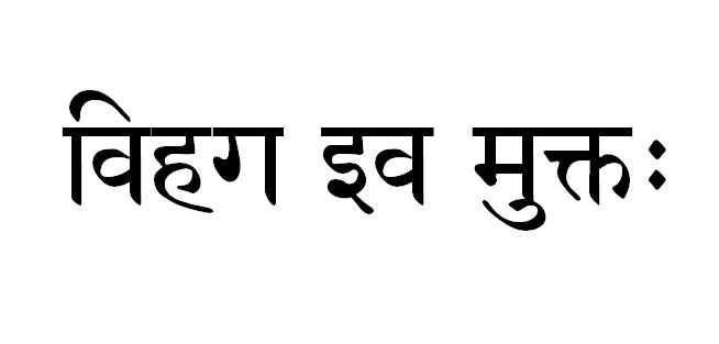 Sanskrit tattoo for As free as a bird