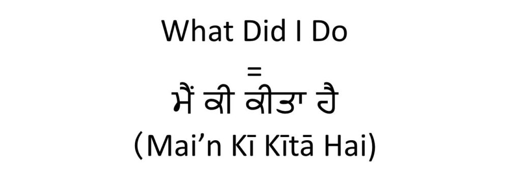 What Did I do in Punjabi