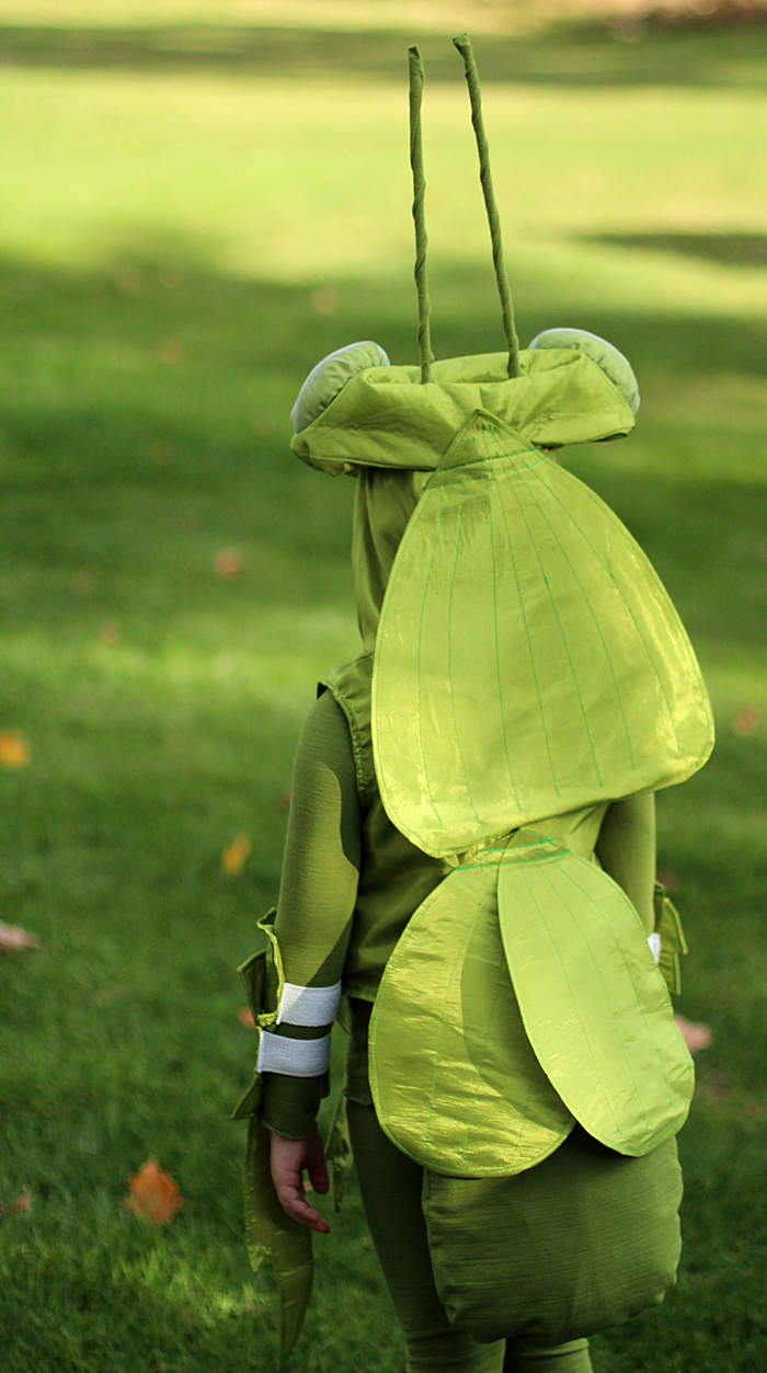 Handmade Halloween Costume: Praying mantis