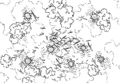 Roadside Clearcut battle map, lines