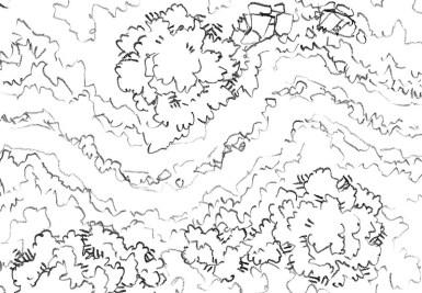 Roadside Wilderness Battle Map (lines)