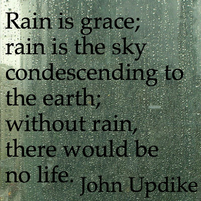 Rainy window with John Updike quote