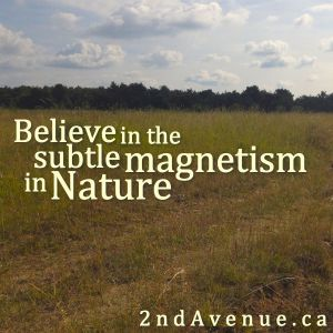 Believe in the subtle magnetism in Nature