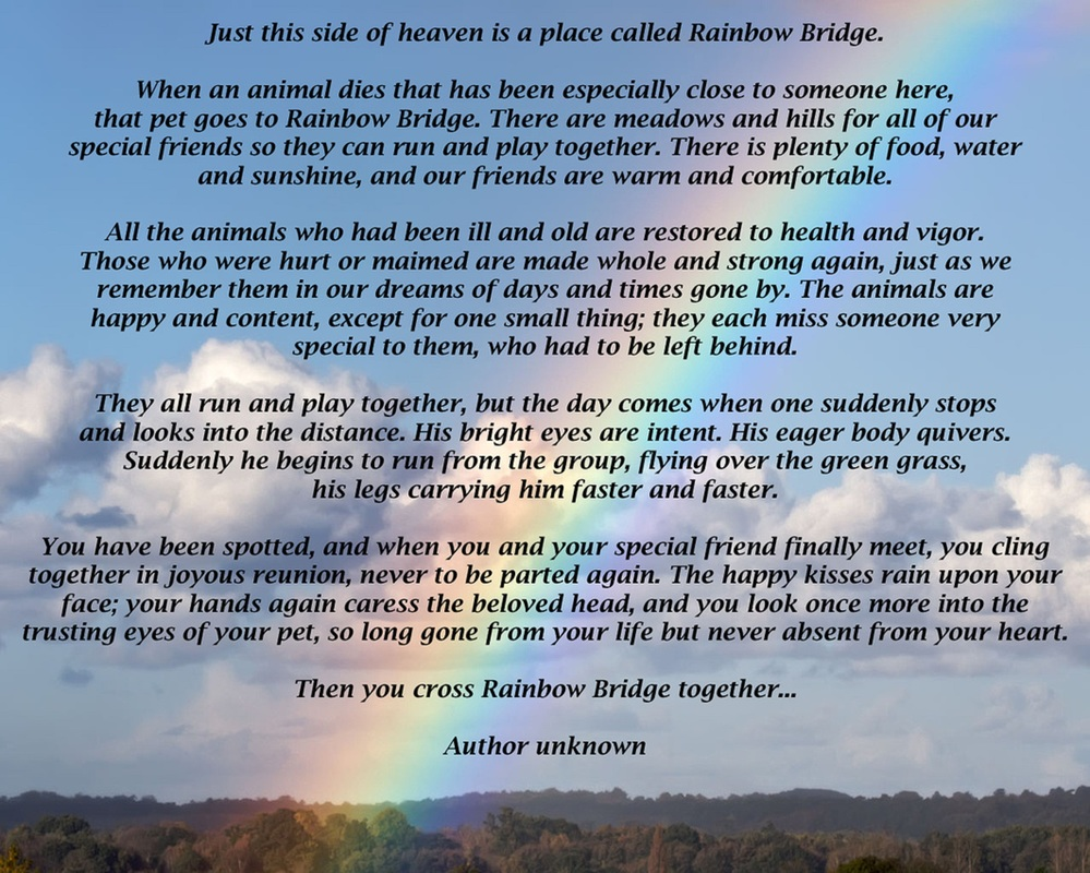 photo relating to Rainbow Bridge Printable identified as Good In direction of Down load Printable Poem With out Rainbow No cost