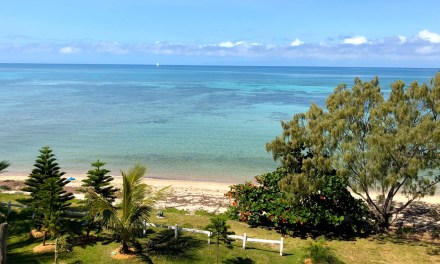 Three Pictures: New Caledonia Trip