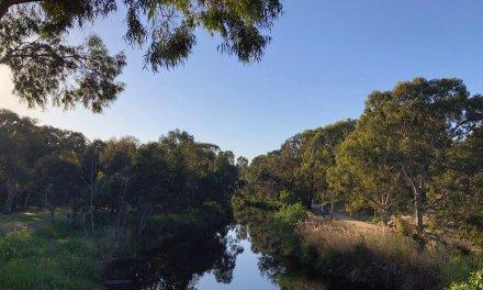 COVID-19: South Australia goes into 6 days lockdown