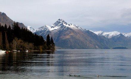 COVID-19: Trans-Tasman travel bubble closed for 3 days