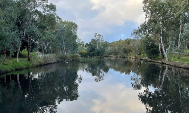 SLOW-Travel: Adelaide, along the Torrens river