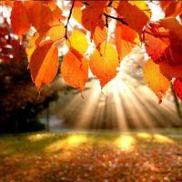 14. Oktober i ord og begivenheder