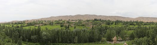 A panoramic view of the Grape Valley