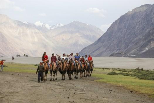 Camel rides in Hunder