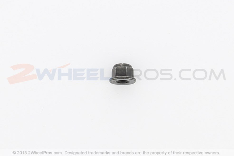 233261494 Can-Am Hex. Elastic Flanged Nut M6 $0.65