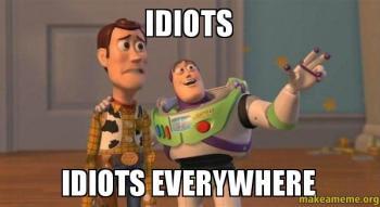 Idiots-Idiots-everywhere