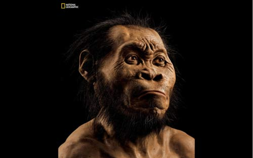 Homo Naledi PIC: Mark Thiessen/National Geographic/Wits