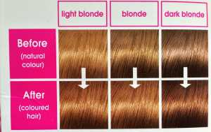 L'Oreal Castings Creme Gloss Golden Honey 730 - Box suggested colour results