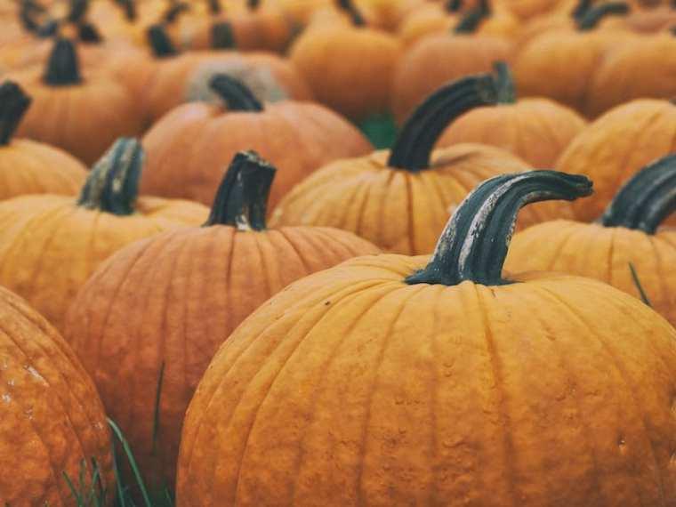 DIY-Halloween-Costumes-Kids