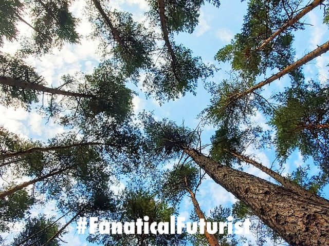 Futurist_carbon_neutral