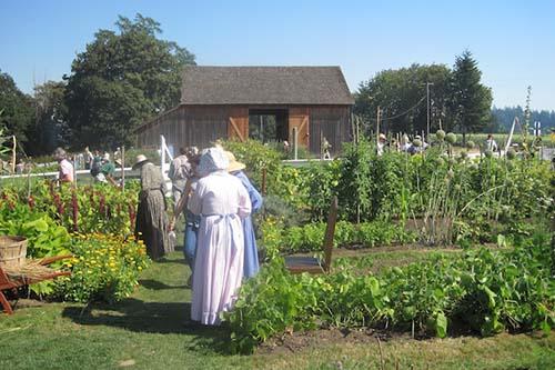 Medicinal Herb Gardens