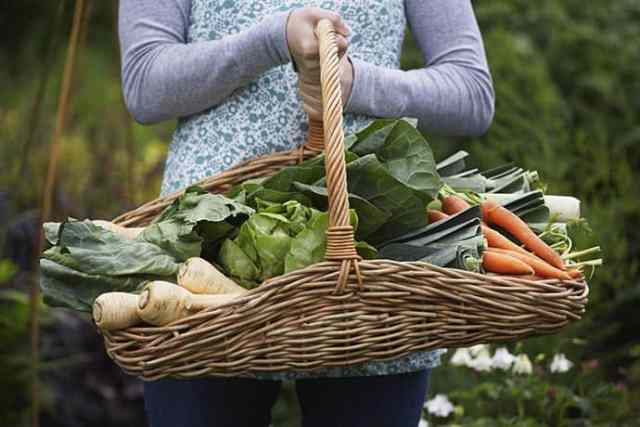 July Farm Stand Finds and Favorite Recipes Too