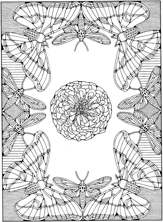 Cute bird flowers branch | Adult Coloring Pages ... | free printable coloring pages for adults advanced