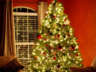 La tradició de l'arbre de Nadal és adoptada dels països del nord d'Europa (Foto: Flickr / donnierayjones)