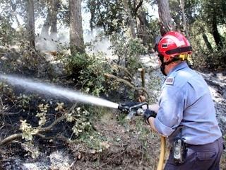 Els bombers continuen remullant la zona afectada perquè el foc no revifi. (Foto: ACN)