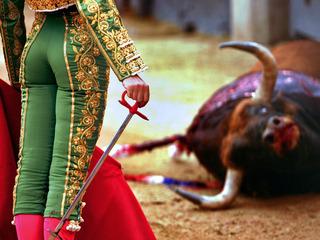 El matador francès Sebastián Castella al costat d'un toro durant una corrida (Foto: EFE)