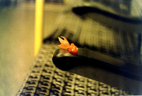 Goldfish on the Tube