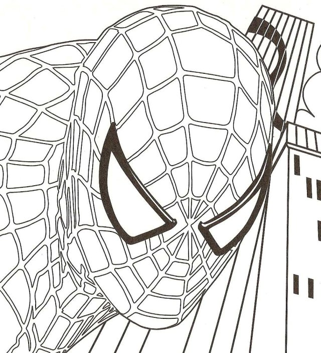 Spiderman Coloring Pages  12ColoringPages