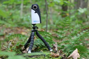 360Rize Tripod in the woods