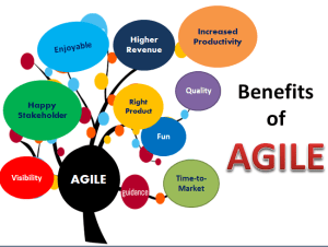 Implement Agile In Application Development