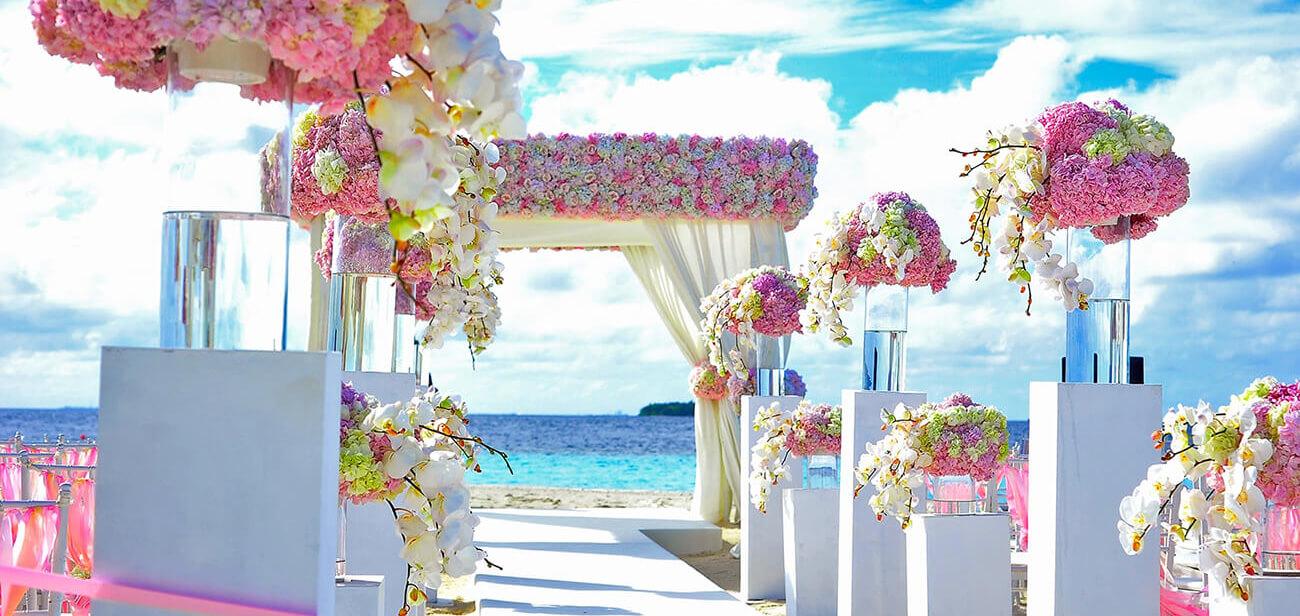 MHow To Develop A Wedding Planning App Like WeddingWire?