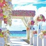 develop wedding planning application