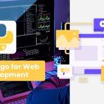 Use Django for Web Development