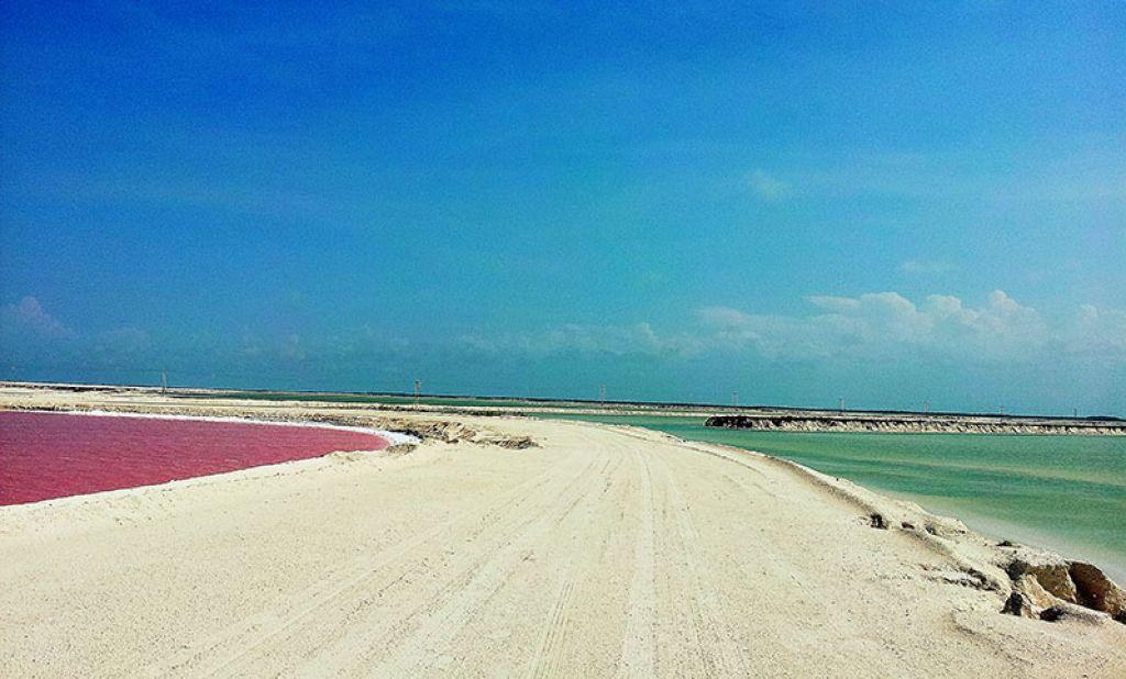 La laguna rosa di Las Coloradas dove la natura  fuori