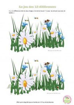 Jeu des 12 différences, printemps, fleurs, jeu gratuit à imprimer