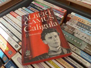 Caligula - auf dem Wochenmarkt in  Sète. © Foto: skr