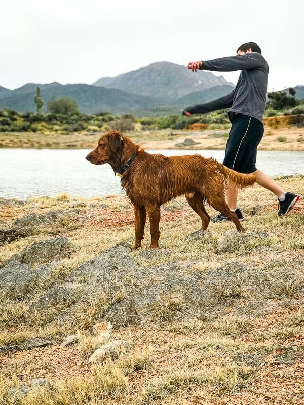 Logan the Golden Dog and Cameron Feifer at Bartlett Lake, AZ.