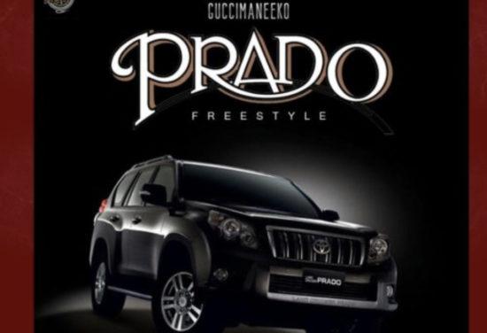 Guccimaneeko - Prado (free style)