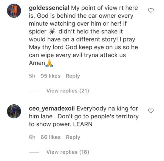 Viral video of a spider that used it's web to trap a snake is breaking the internet… How on earth did this happen!! (Video) 2