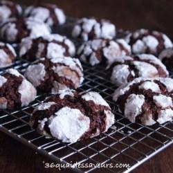 Biscuits craquelés au chocolat de Martha Stewart