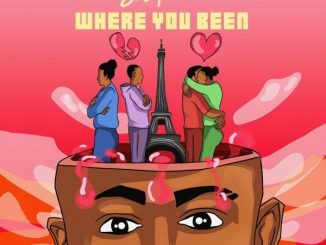 Sean Tizzle – Where You Been
