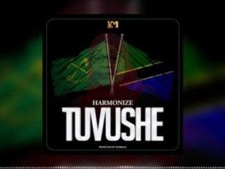 Harmonize – Tuvushe Mp3 Download Audio