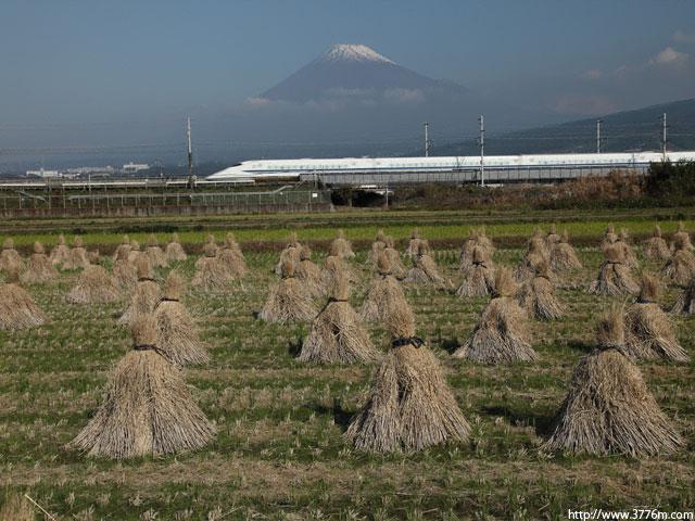 収穫の秋を行く/富士市藤岡